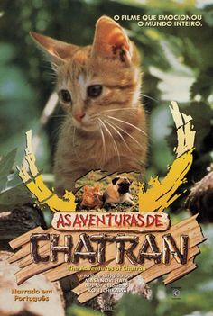 The Adventures Of Chatran
