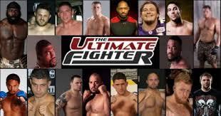 The Ultimate Fighter: Season 8