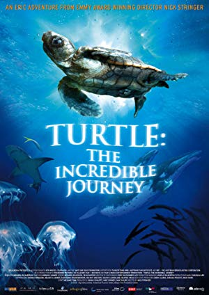 Turtle: The Incredible Journey