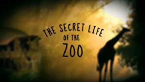 The Secret Life Of The Zoo: Season 7
