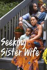 Seeking Sister Wife: Season 1