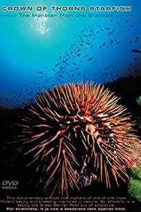 Crown Of Thorns Starfish Monster From The Shallows