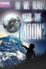 Do We Really Need The Moon?