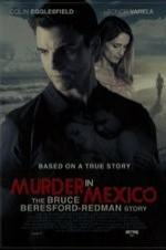 Murder In Mexico: The Bruce Beresford-redman Story