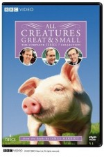 All Creatures Great And Small: Season 1
