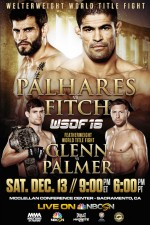 World Series Of Fighting 16 Palhares Vs Fitch